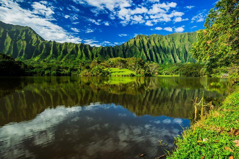 Jeremy Kalan & Diana Fenton Kalan's Office: 452 Aulima Loop, Kailua, HI 96734